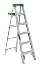 6' or 8' Ladder